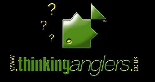 Thinking Anglers